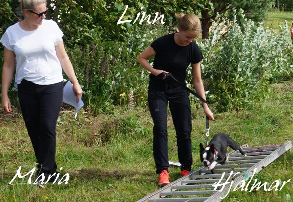 Härlige Hjalmar tillsammans med lillmatte Linn
