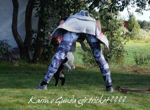 Karin o Gunda gör tricks