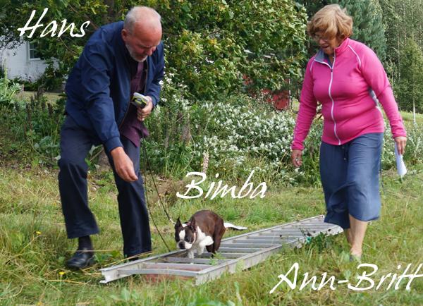 Bedårande Bimba jobbar sej genom stegen tillsammans med husse Hans o matte Ann-Britt