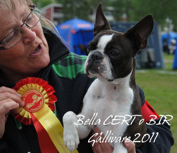 1A.Bella G-vare Cert 1 18juni2011 kopiera