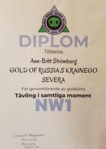 nw1-diplom1