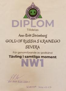nw1-diplom2
